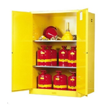 2 Door Tall Safety Cabinet For Flammables Ecosafe